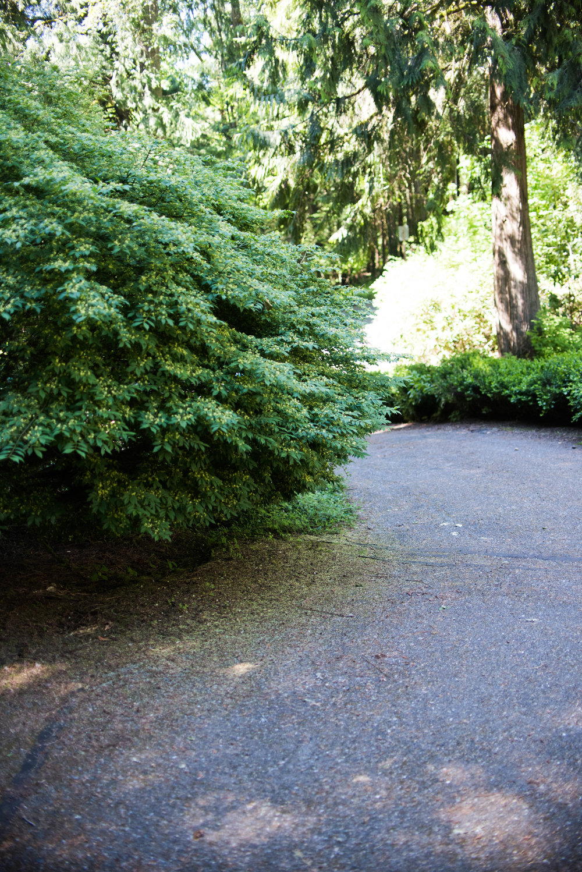 Ames Lake House Before - Blog Edits (21 of 31).jpg
