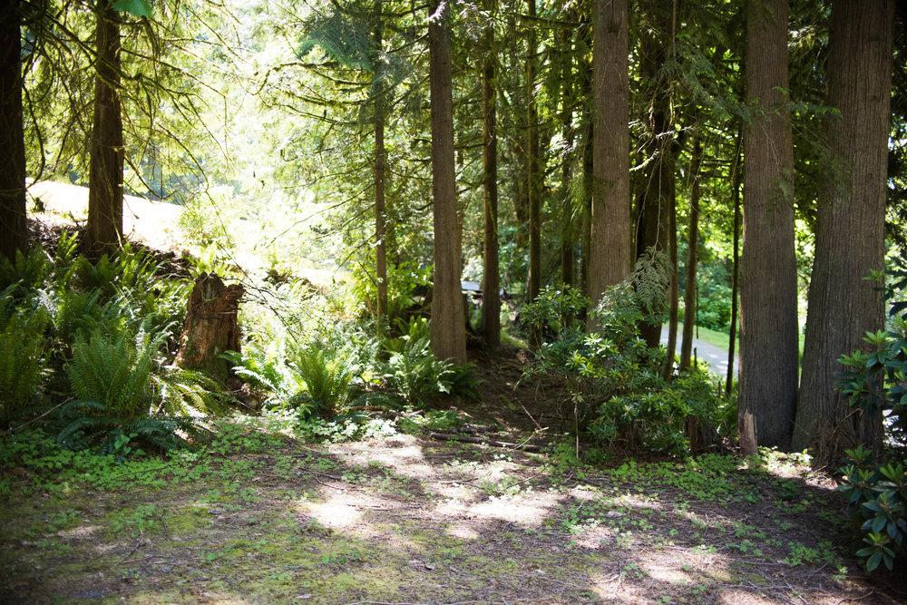 Ames Lake House Before - Blog Edits (23 of 31).jpg