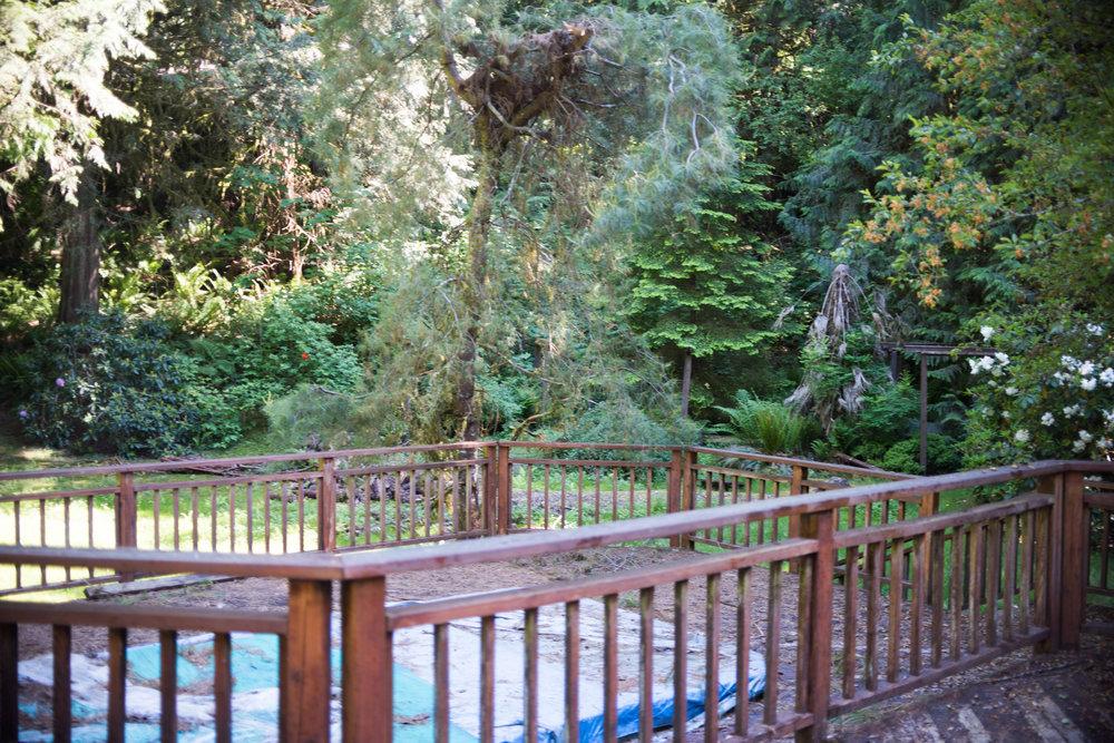 Ames Lake House Before - Blog Edits (26 of 31).jpg