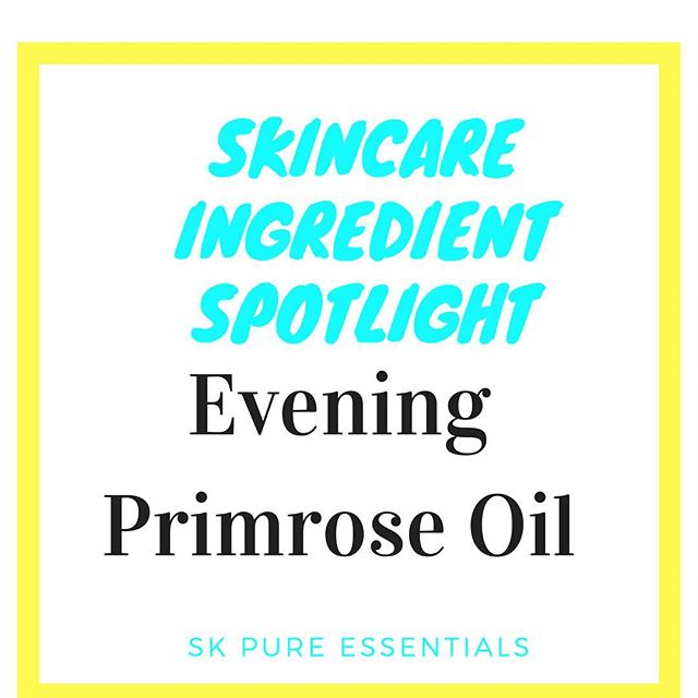Evening Primrose Oil  Natural remedy for presently and treating hair loss The average person losses about 50 - 100 hairs per day High fatty acid content to protect nails and nourish the scalp as well as other hair problems Reduces skin itchiness caused by dermatitis and eczema Capable in regulating body inflammation Used for the treatment of acne as it reduces the problems caused by clogged pores Nourishes the scalp Prevents hair loss and contributes to hair growth Key in maintaining healthy hair development and growth Needs to be applied to the hair on a routine basis for a minimum of 2 months Improves hair texture by increasing moisture retention and preventing hair from becoming excessively dry  Follow sk_essentials for more tips and products * * * * * * #skincareroutine #skincareblogger #skincaretips #skincareproduct #skincareluxury #skincareproducts #naturalskincareproducts #naturalbeautyproducts #nontoxicbeauty #nontoxicskincare #nontoxic #botanicalskincare #greenbeauty #greenbeautyblogger #greenbeautyproducts #cleanbeauty #skessentials #glowingskin #beautytips #veganbeauty #cleanbeauty #allnaturalbeauty #allnaturalproducts #crueltyfreebeauty #flawlessskin #beautifulskin #beautifulface #purebeauty #holisticbeauty