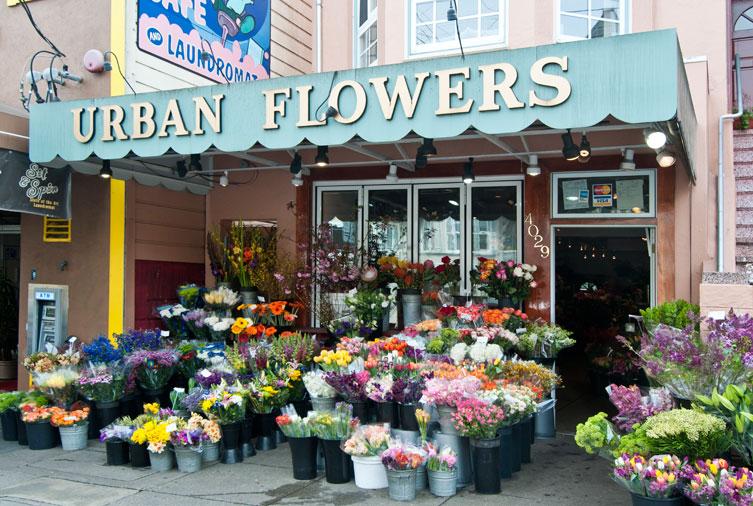 urban-flowers.jpg