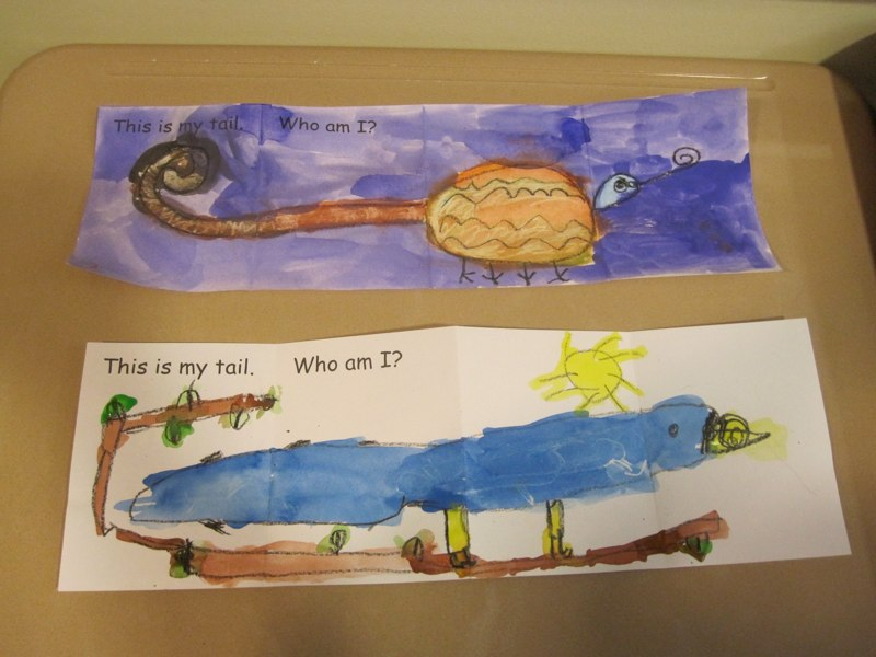 Bird and Iguana Tail Illustrations