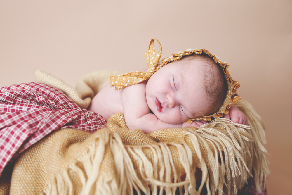 Worthington, Ohio local photographer, megan V photography. Powell studio servicing newborns, children and family sessions.