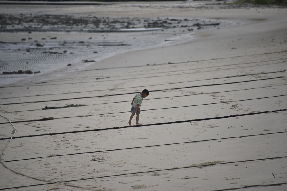 Young sailor making sure the beach anchor lines are secure.