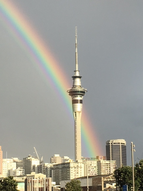 Afternoon showers yielded a beautiful rainbow over the central business district of Auckland.