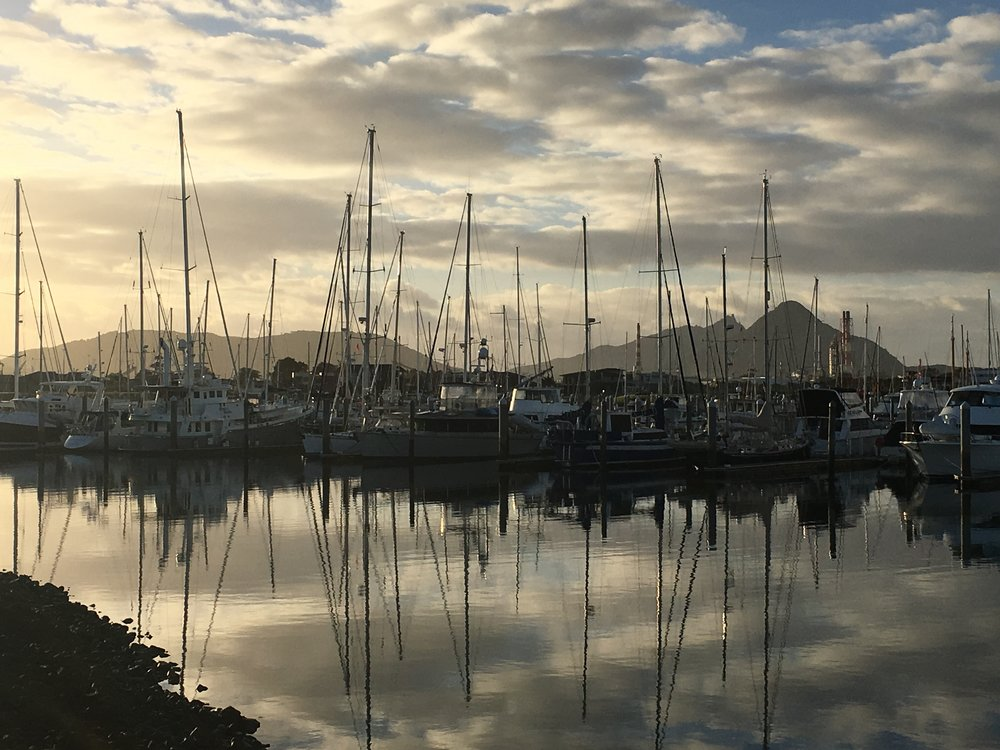 A sunrise walk along the marina's edge.