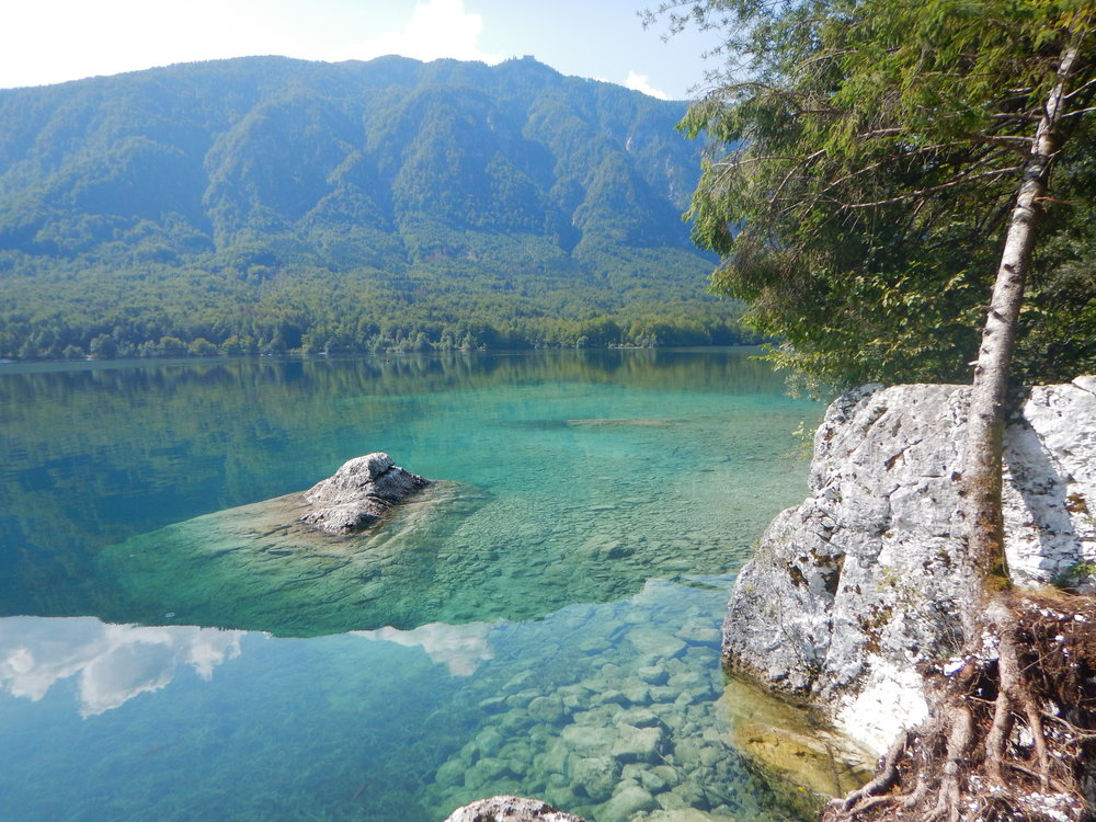 The water in Lake Bohinj is so clear!