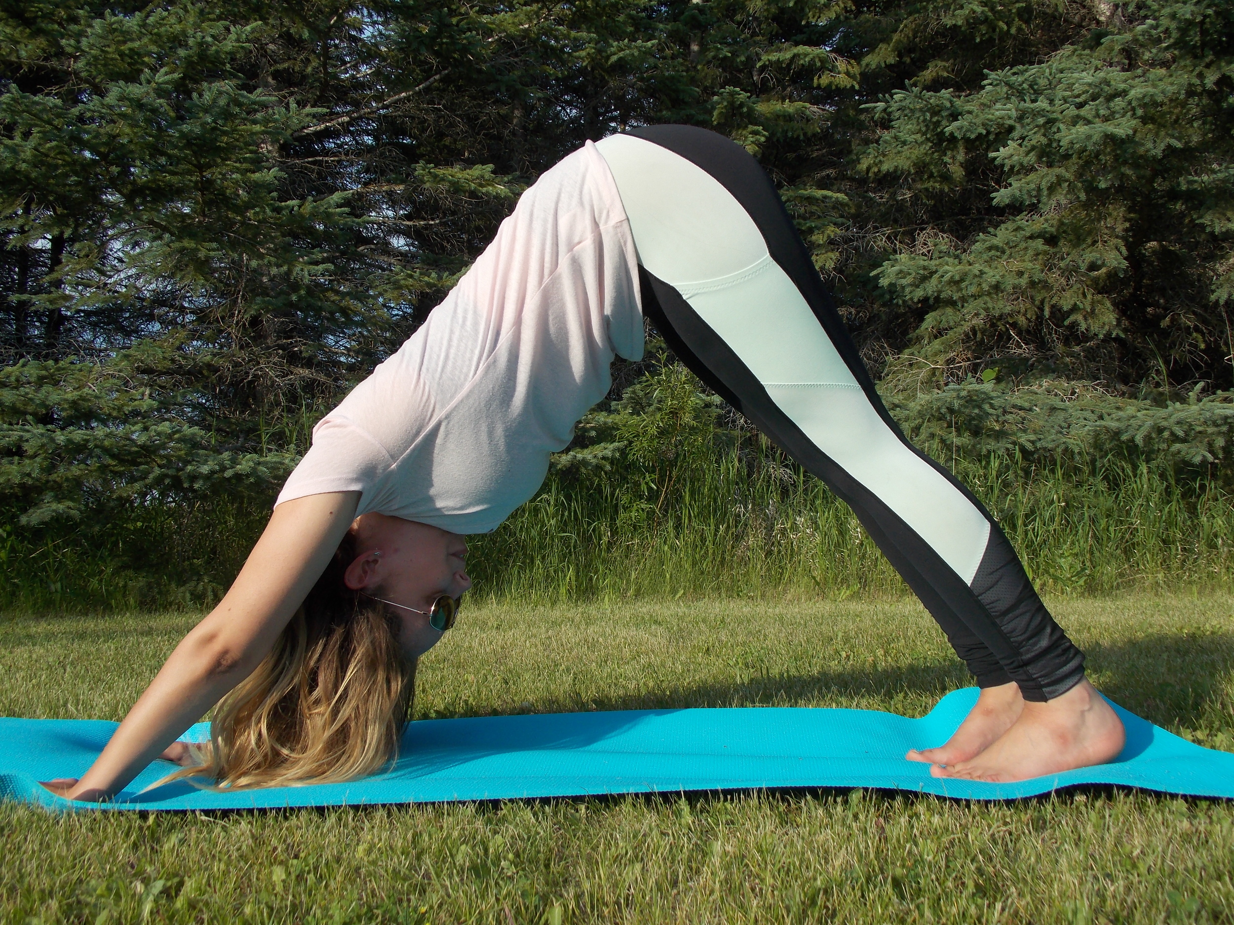 The classic: Downward Dog