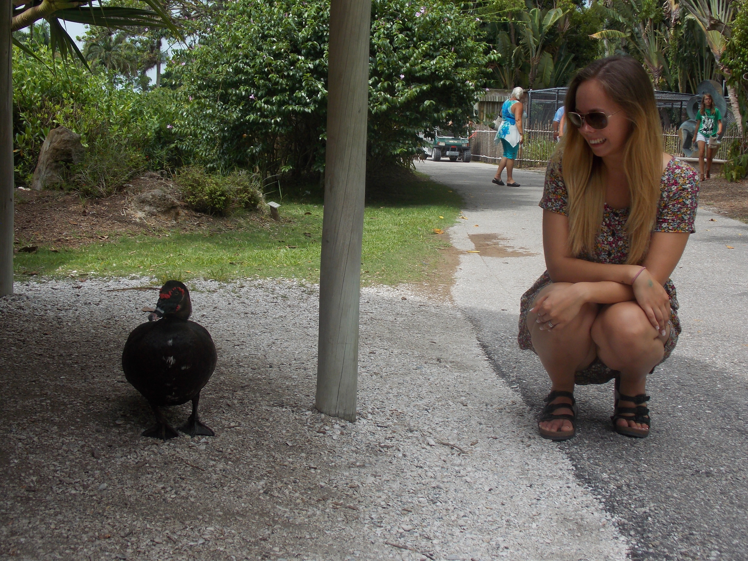 These ducks got SO close if you had food anywhere near you. I wanted to snuggle this little munchkin so bad!