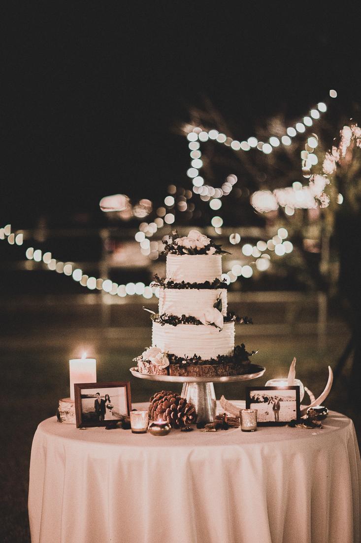 jarvis_wedding_tyfrenchphoto (182 of 317).jpg