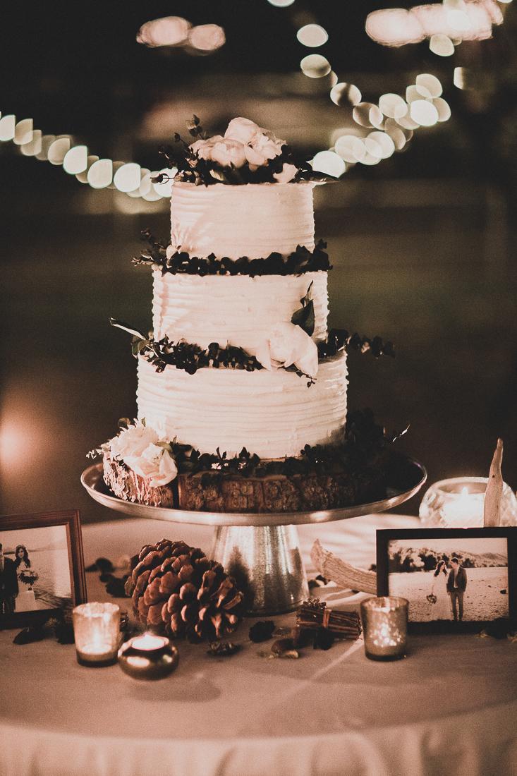 jarvis_wedding_tyfrenchphoto (184 of 317).jpg