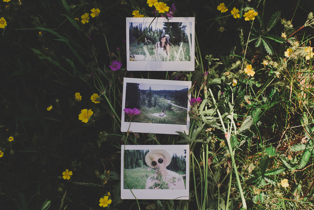 picnic_tyfrench.life (6 of 17).jpg