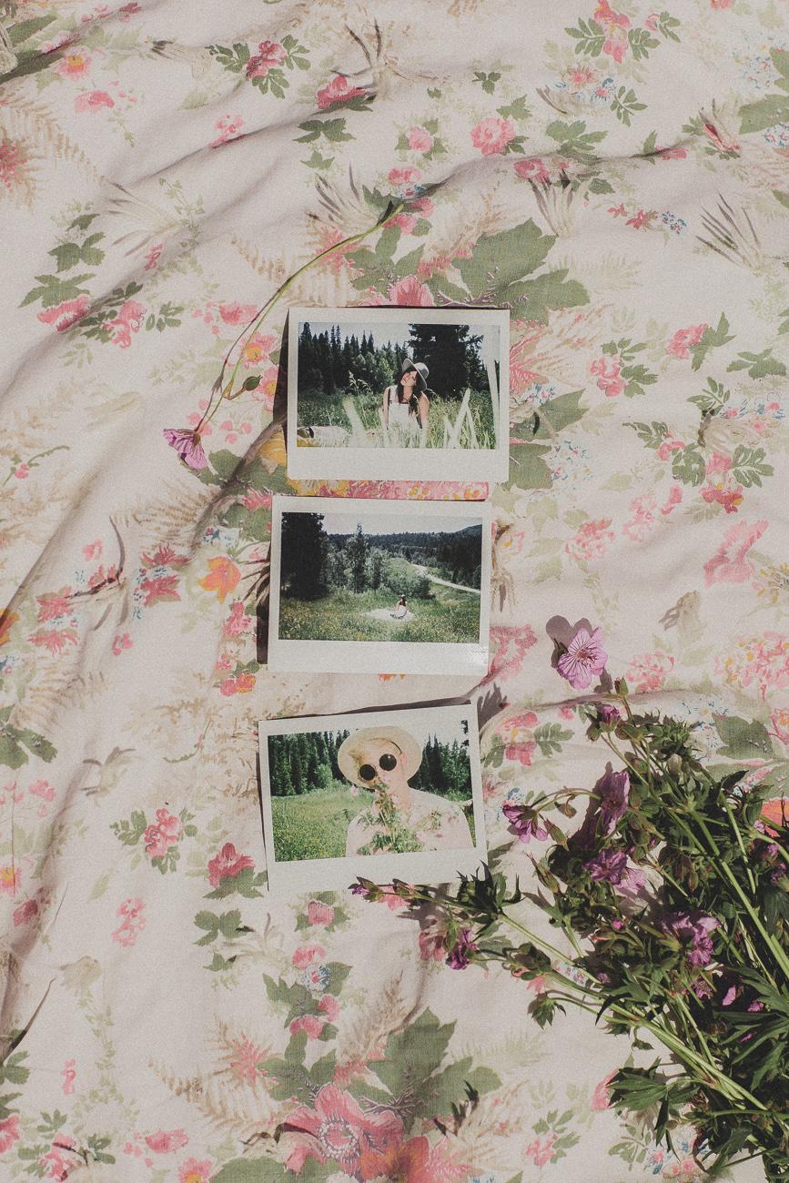 picnic_tyfrench.life (5 of 17).jpg