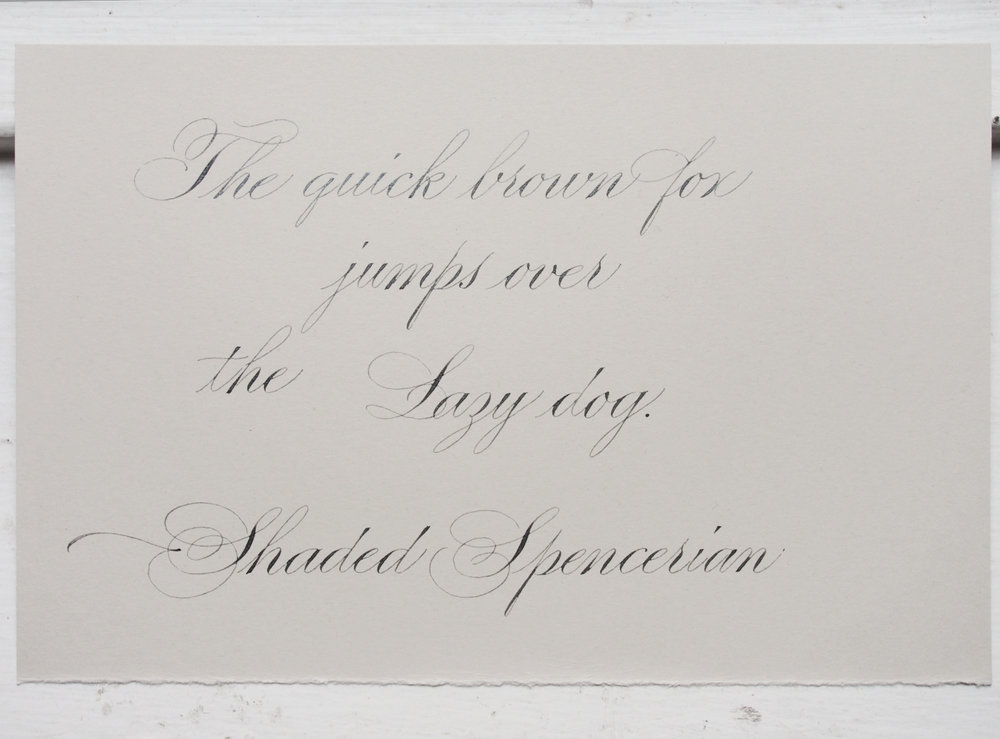 Shaded Spencerian Pangram
