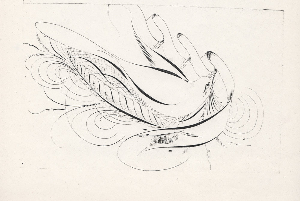 Bird-with-Scroll-and-Quill-2_WEB.jpg