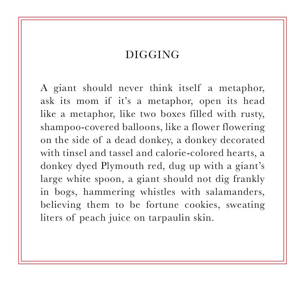 digging3.jpg