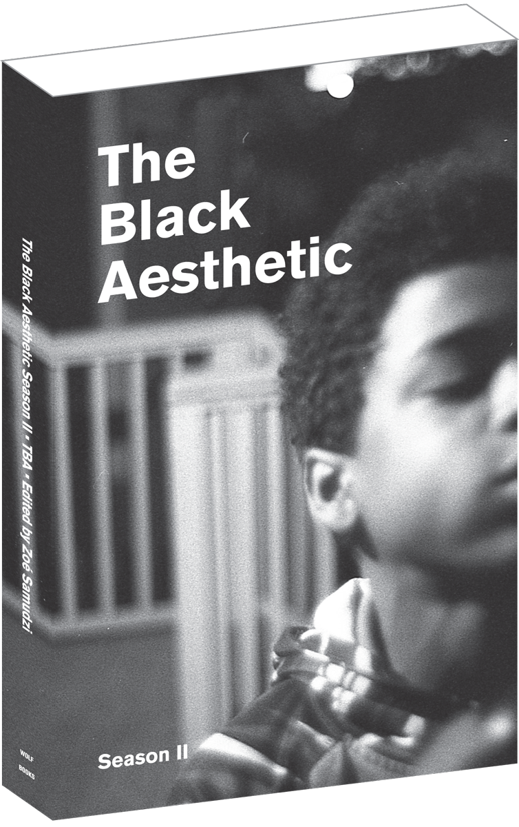 Black Aesthetic Season II    Various Authors, ed Zo é  Samudzi    $12.00    Essays/Poetry/Criticism/Black Studies    Essays about and interviews with contemporary Black filmmakers by artists, writers and filmmakers. The second book based on The Black Aesthetic Film Series.