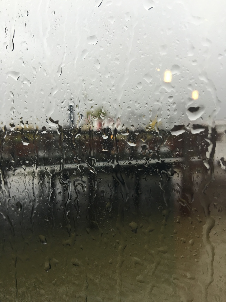 A wet world view