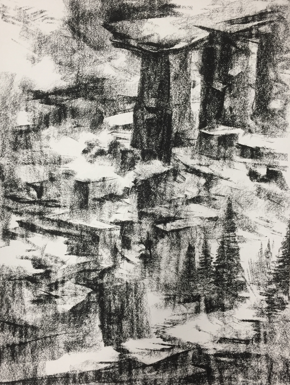 """Unititled"" - Charcoal on Paper 18 X 24 Inches"