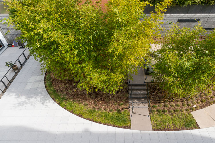 garden-view-1.jpg