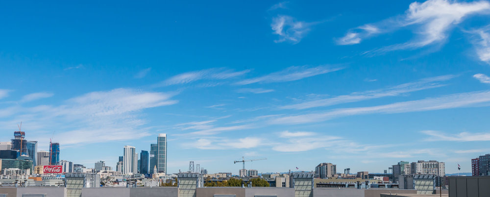 roof_view-01.jpg