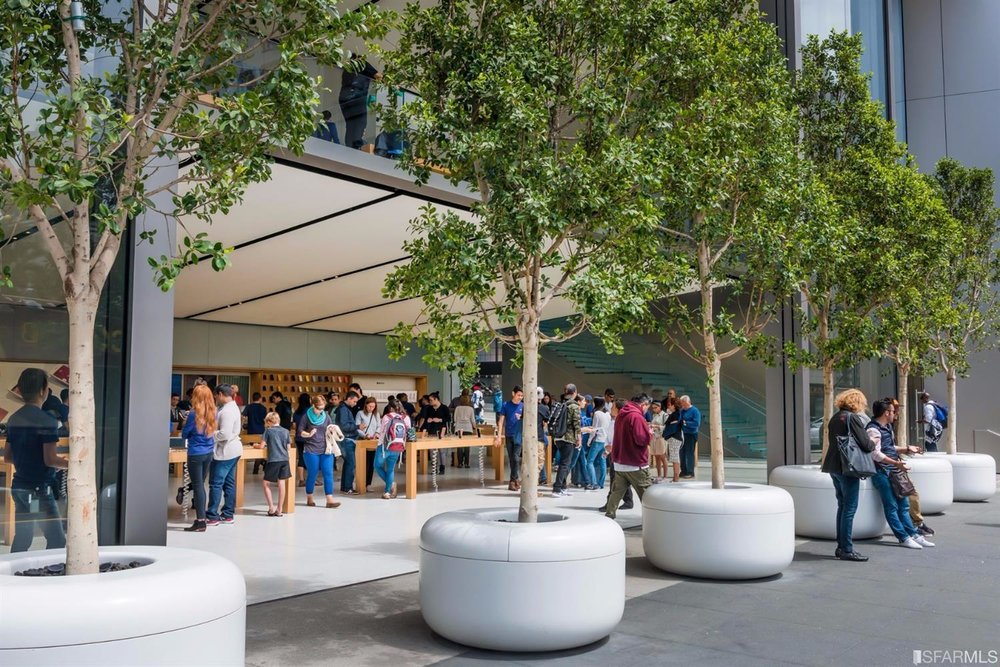 New Apple Store.jpg