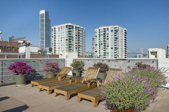 roof deck-1.jpg