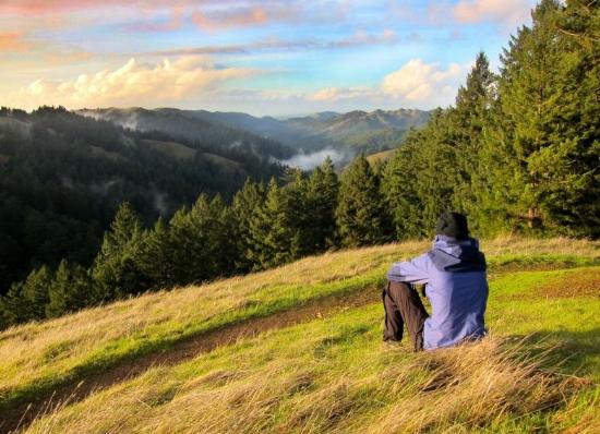 Photo credits Via Magazine:Mount Tamalpais State Park High Marsh Trail.