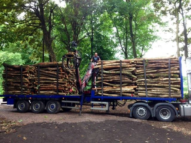 Wood delivery.jpg