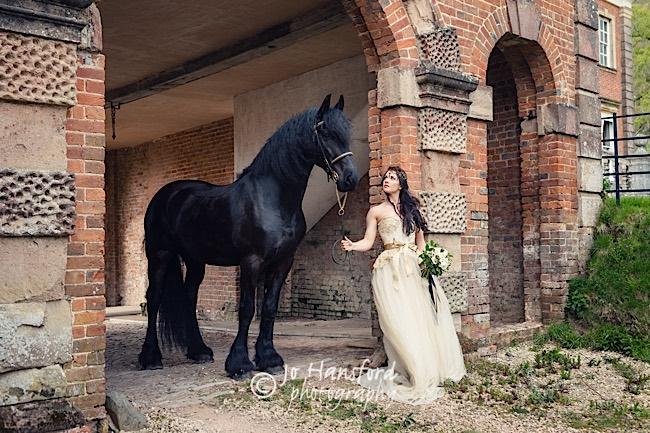 Bridal_Equine_Jo_Hansford_138-v2_xpro.jpg