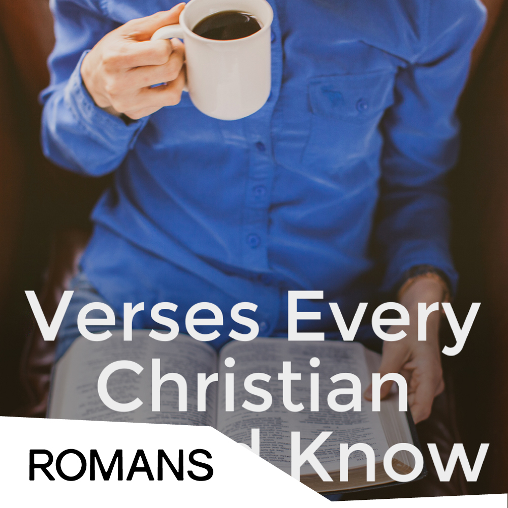 Verses Every Christian Should Know - Cover.jpg
