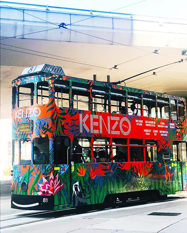 We travel in style in this concrete jungle @kenzo @hktramways 🚃🌴🌺🐒