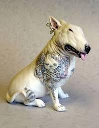 Tattooed dog.jpg