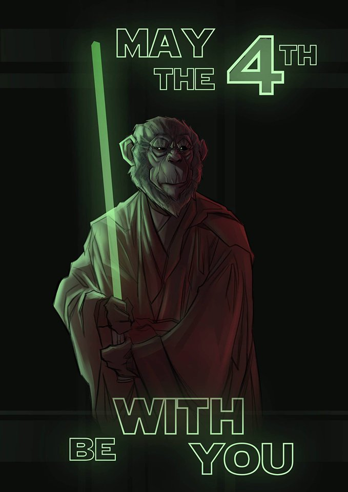 'The 4th Jedi' By Francesco Tomaselli