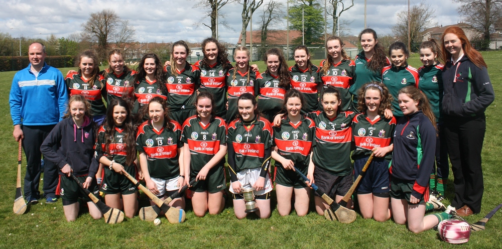 Senior Camogie County Champions