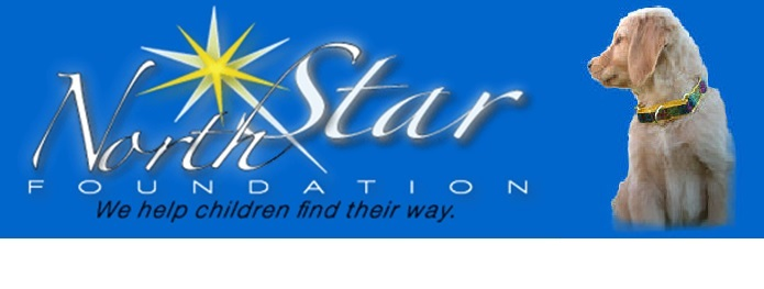 North Star Foundation
