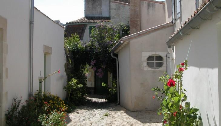 ruelle-des-jardins-730x417.jpg