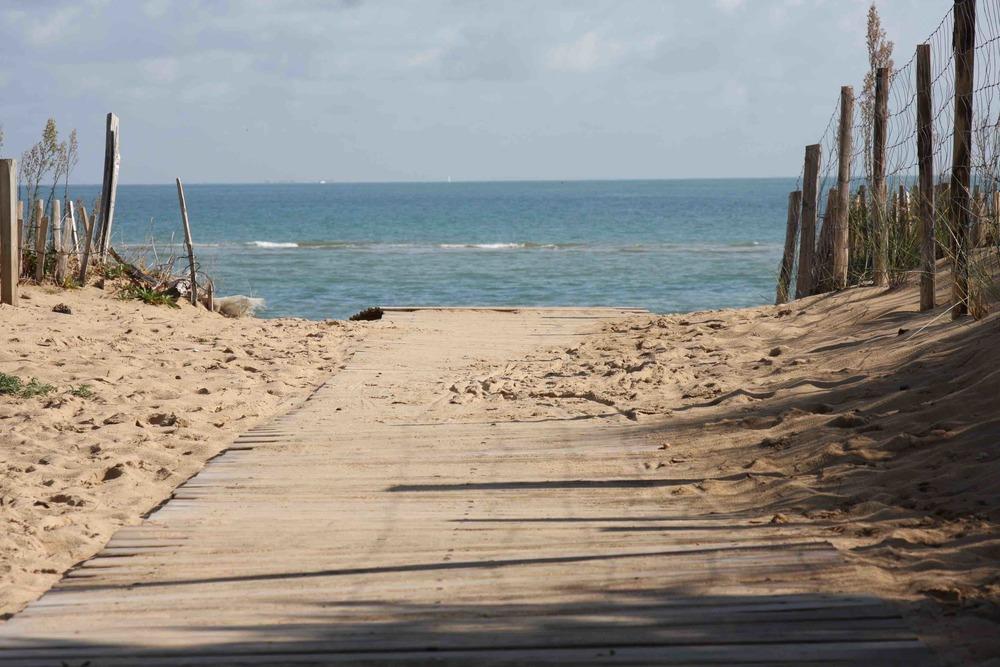 Entrée de plage au bois plage en ré