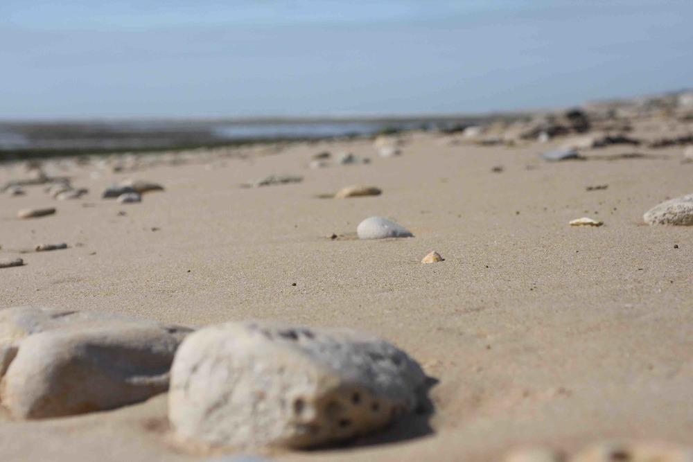 Plage de sable fin,  la couarde sur mer