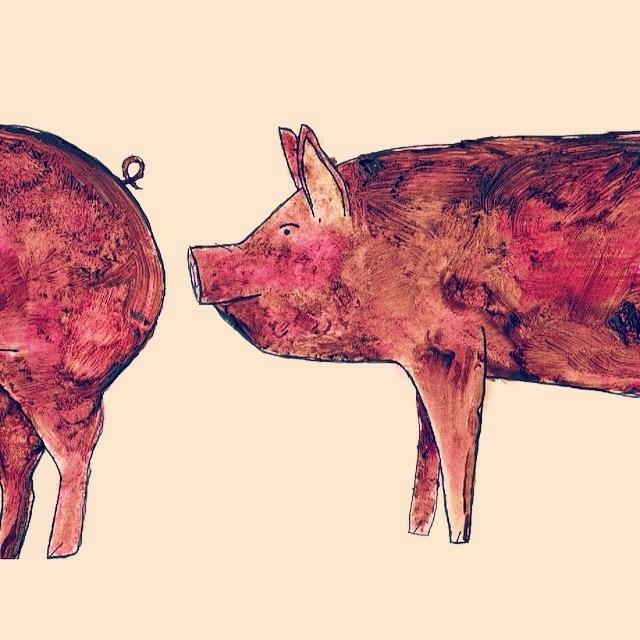 The original chocolate pigs