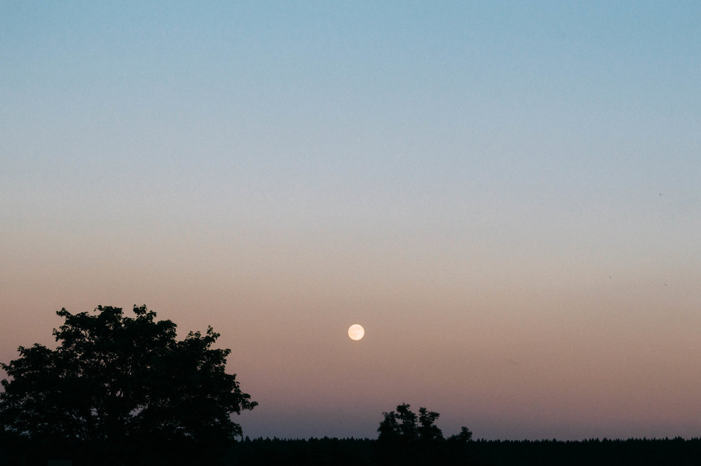 Image Description: A full moon during sunset over a landscape of trees.