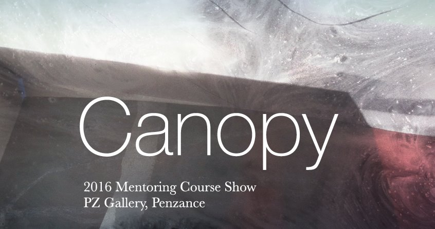 Canopy  art show  is the year-end show of the 2016 Artist Mentoring Course at  Newlyn School of Art  in Cornwall, UK