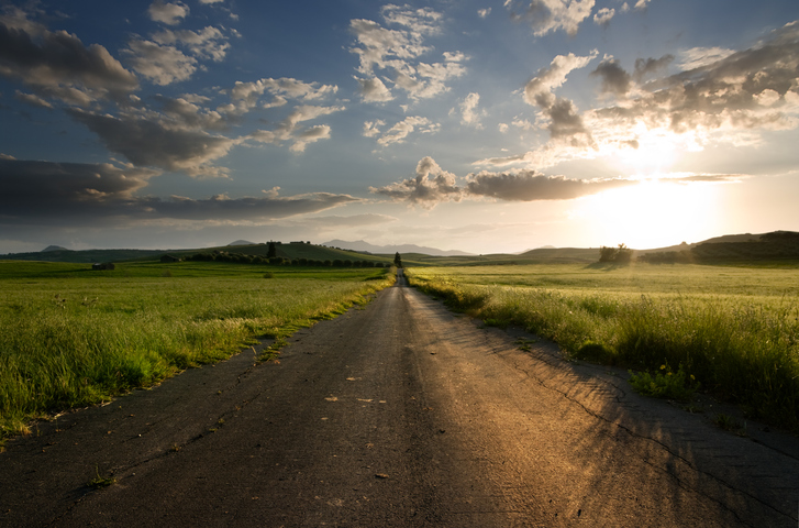 country road stacey berger.jpg