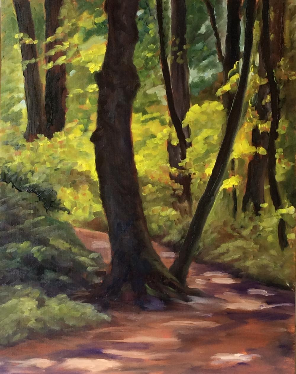 Mystic Vale Morning   Oil 14 x 11