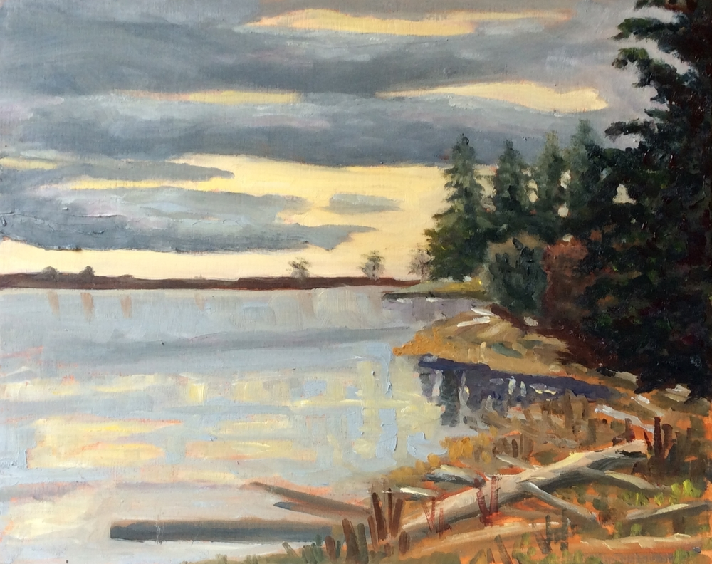 Morning Lagoon   Oil 8 x 10