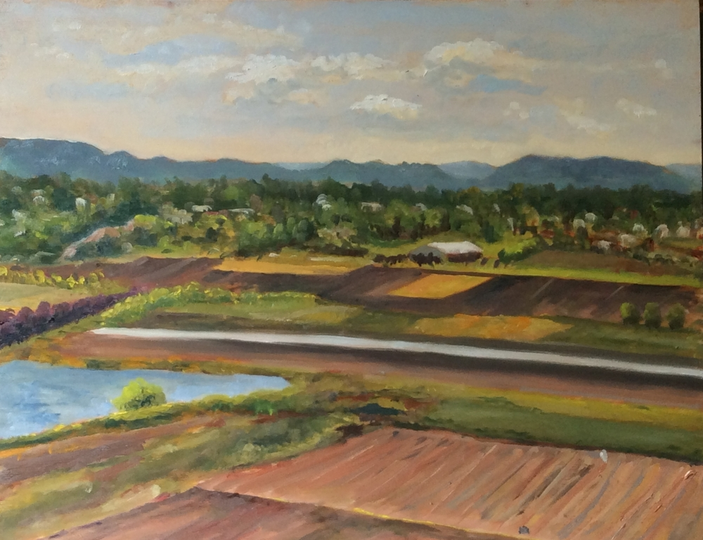 Michell's Farm -West South West   Oil 11 x 14