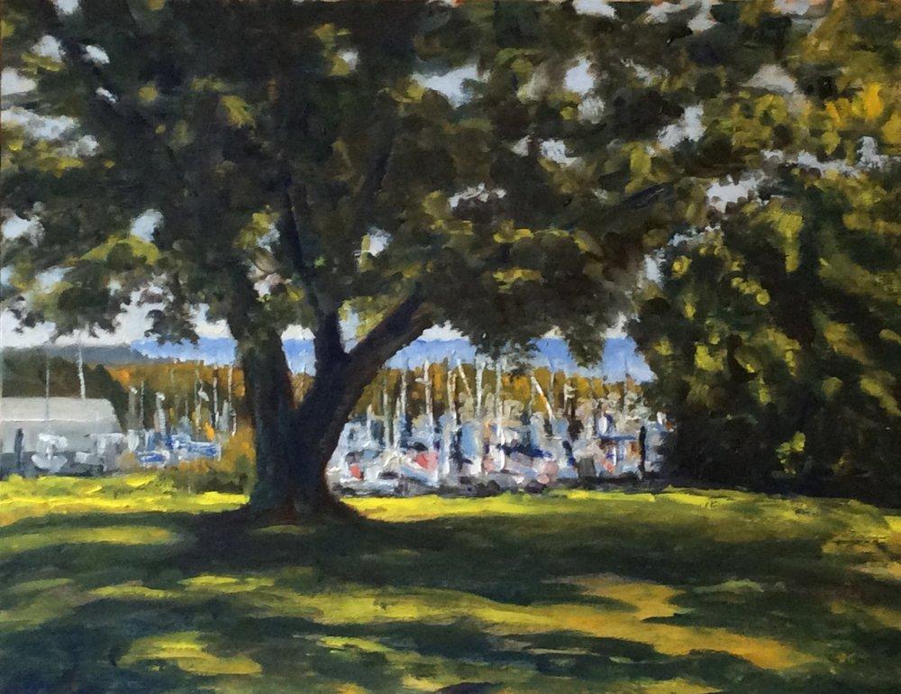 Marina Through the Trees   Oil 11 x 14