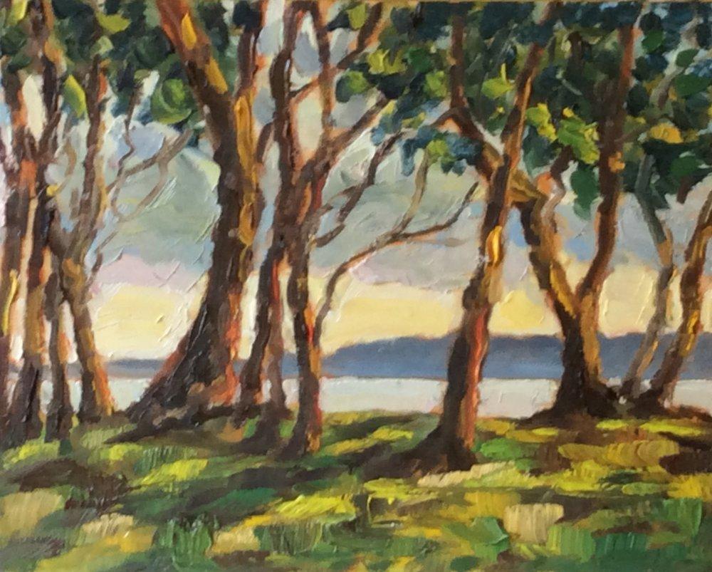 Along the Treeline One   Oil 8 x 10