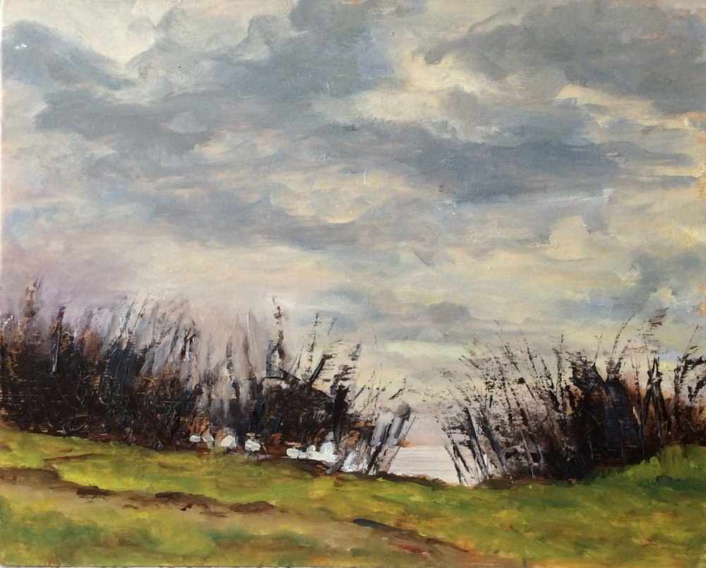 Up Anderson Hill   Oil 8 x 10