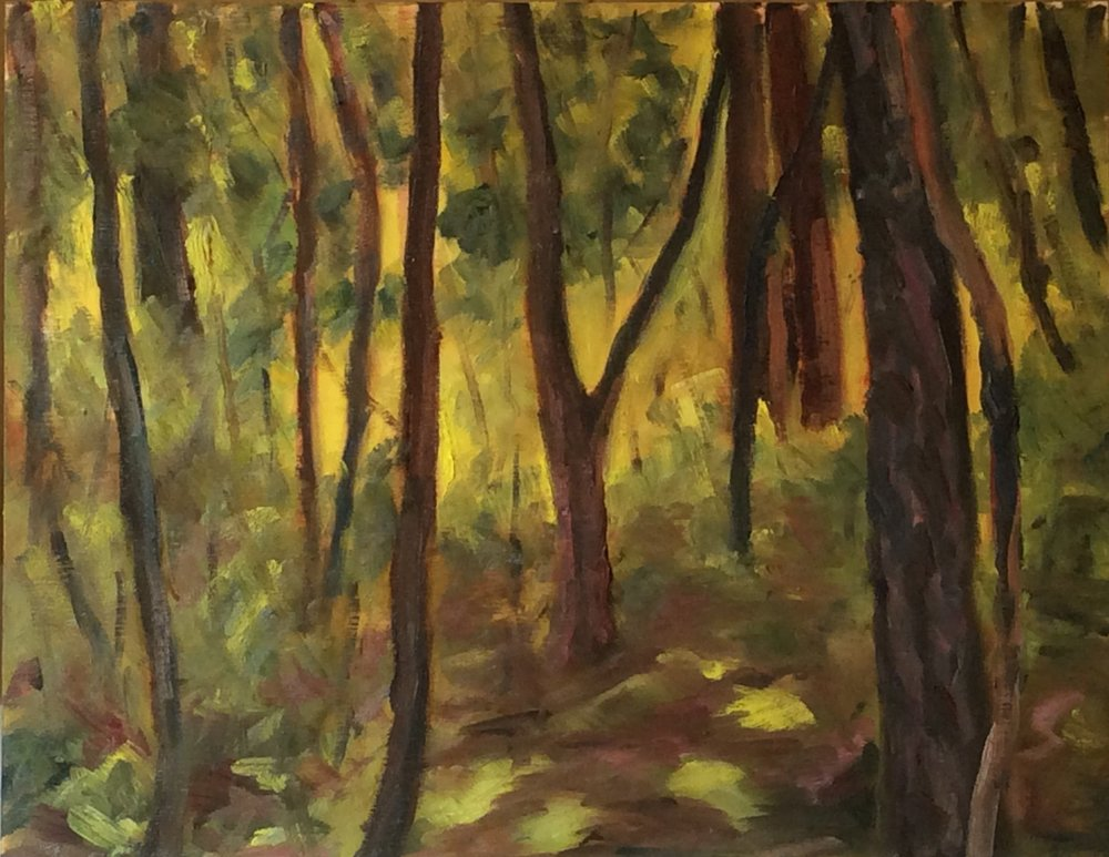 Mystic Forest   Oil 11 x 14